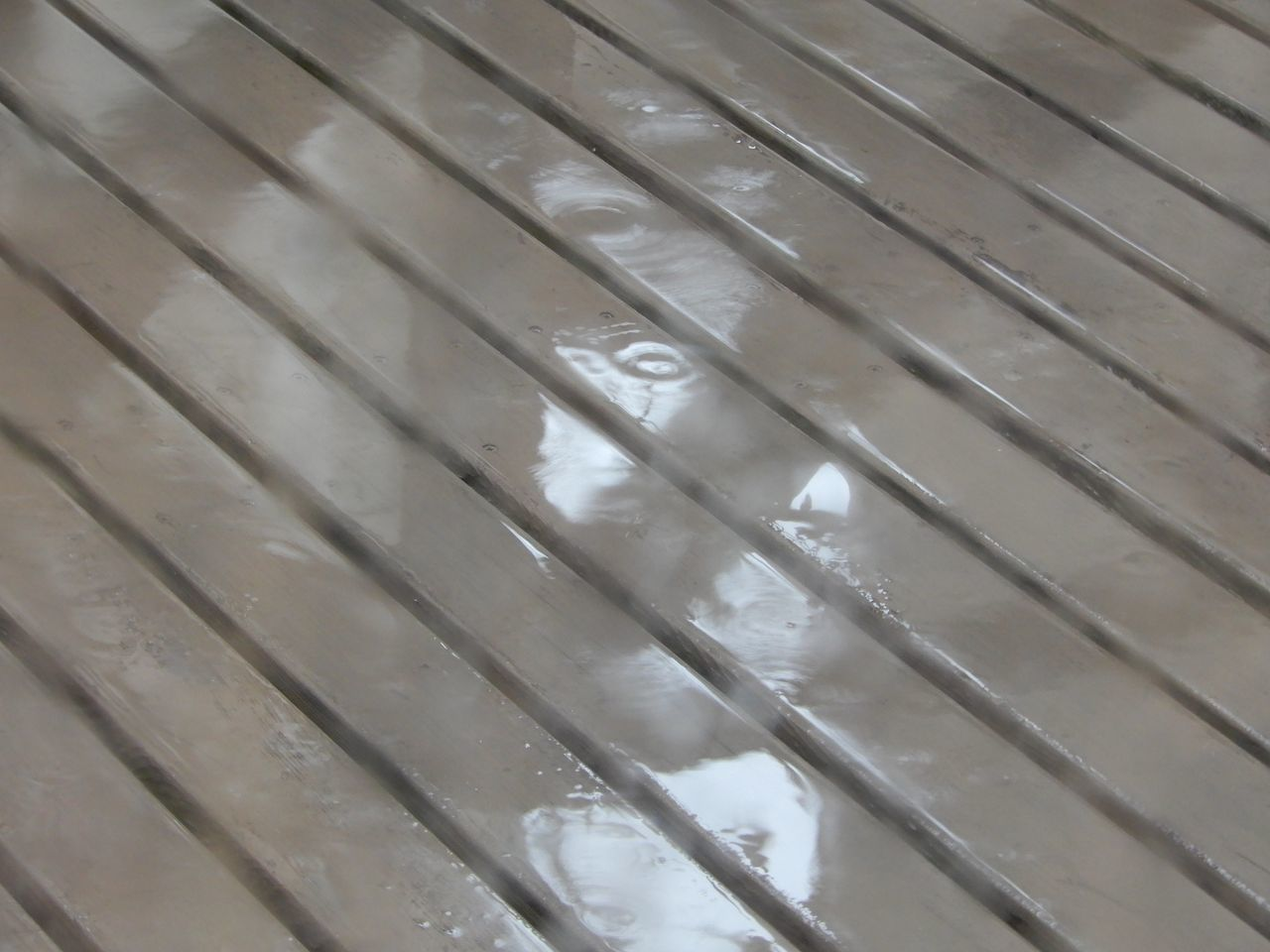 冷たい雨が降り続く_c0025115_21572340.jpg