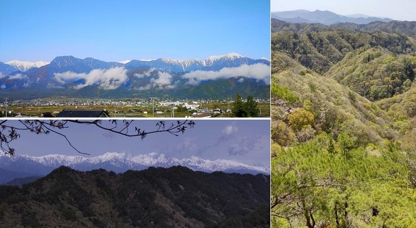 里山は、新緑 @岩州公園_a0212730_19040832.jpg