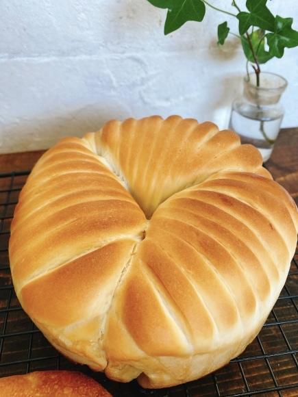 5月6月のパン教室_f0325370_15350649.jpeg