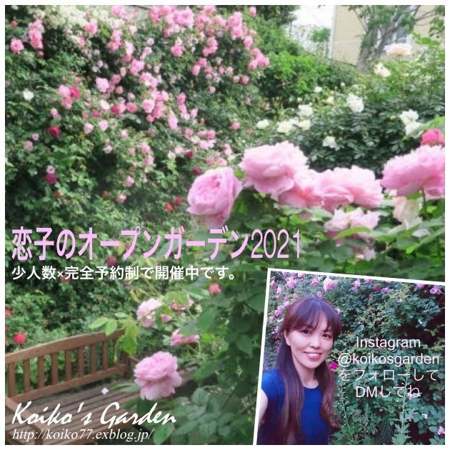 恋子のオープンガーデン2021 in Tokyo_d0049381_03340241.jpg
