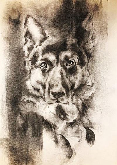 木炭犬_e0195115_16364732.jpg