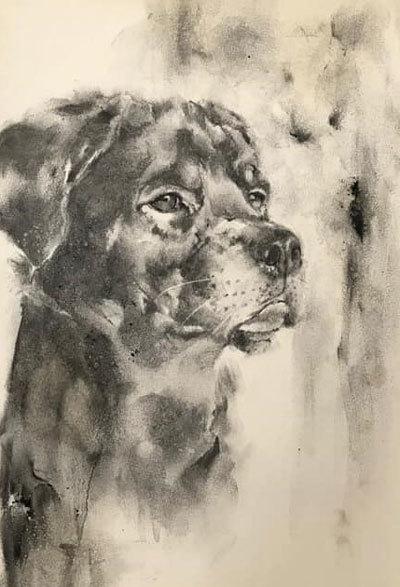 木炭犬_e0195115_16371516.jpg