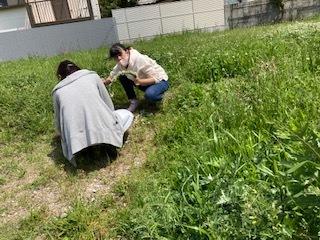 《おやこ楽農くらぶの皆さんへ》サツマイモの苗の植えつけ、完了です!_f0079749_17214459.jpg