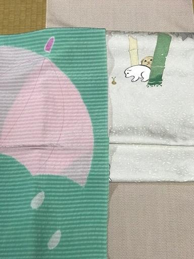 本塩沢に雪佳・狗児名古屋帯・袷、単衣コーディネイト。_f0181251_16413003.jpg