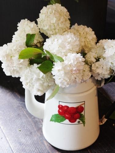 花咲く5月♪_e0167795_15484362.jpg