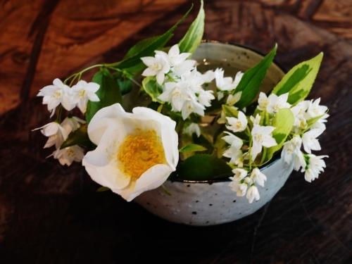 花咲く5月♪_e0167795_15490029.jpg