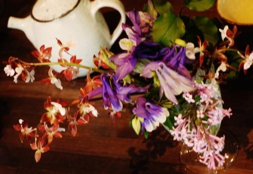 花咲く5月♪_e0167795_15491217.jpg