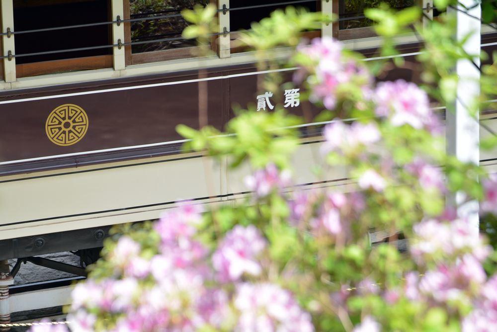 新緑の中の京都市電_e0373930_15050691.jpg