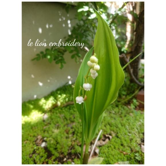 春のお庭_a0146536_21174121.png