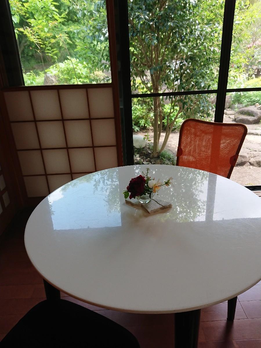 牡丹園ウォーキング&ここちテリアでお弁当ランチ_f0323446_21362519.jpg