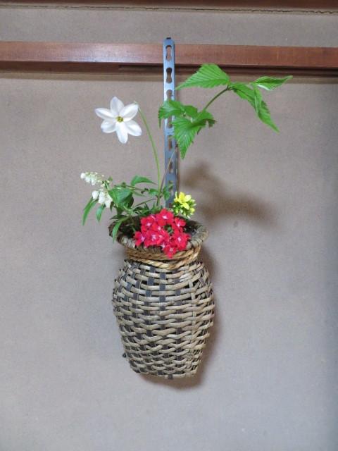 春の庭先に咲く花々_f0329849_21143260.jpg