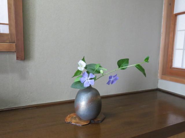 春の庭先に咲く花々_f0329849_21161527.jpg