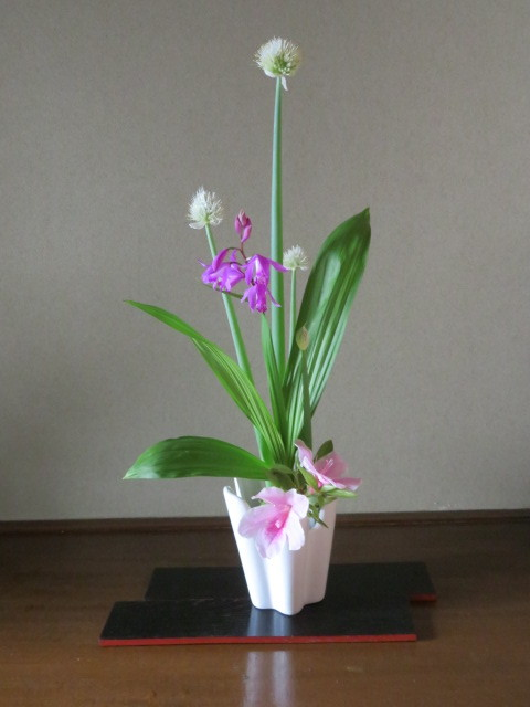 春の庭先に咲く花々_f0329849_21193055.jpg