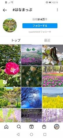 アオスジアゲハ(青条揚羽)_b0188757_10065737.jpg