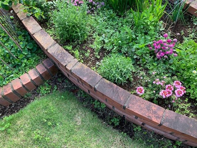 春の庭_b0367284_16173915.jpg