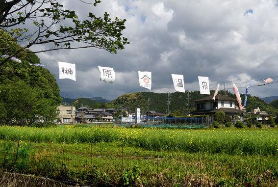 コイが跳ねる榊原温泉_b0145296_11045602.jpg