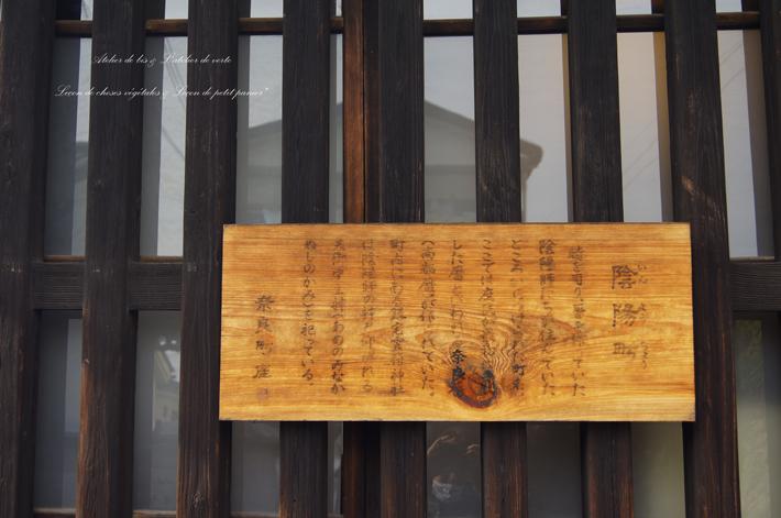 奈良散策のつづきとレトロな町旅へ。_b0365901_04293741.jpg