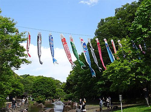 花見川散歩_c0137404_17170758.jpg
