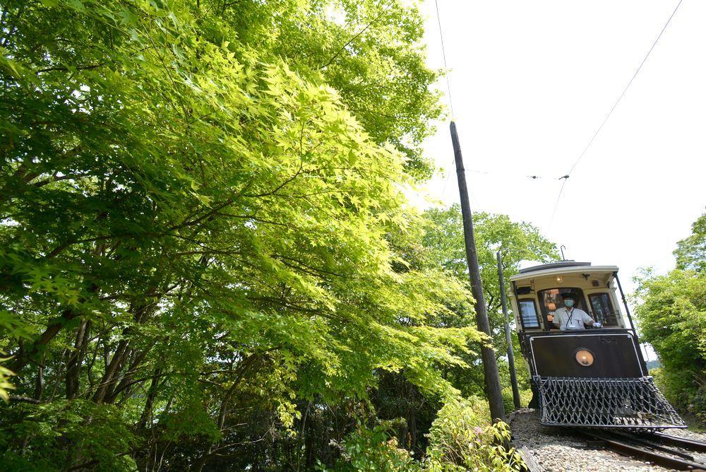 新緑の中の京都市電2 品川燈台電停_e0373930_23251909.jpg