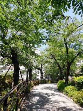 池田山散策_a0061057_21452325.jpg