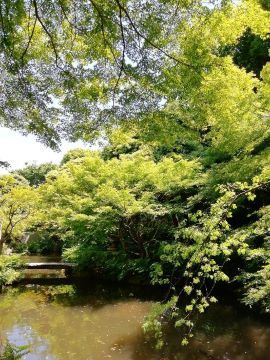 池田山散策_a0061057_21454136.jpg