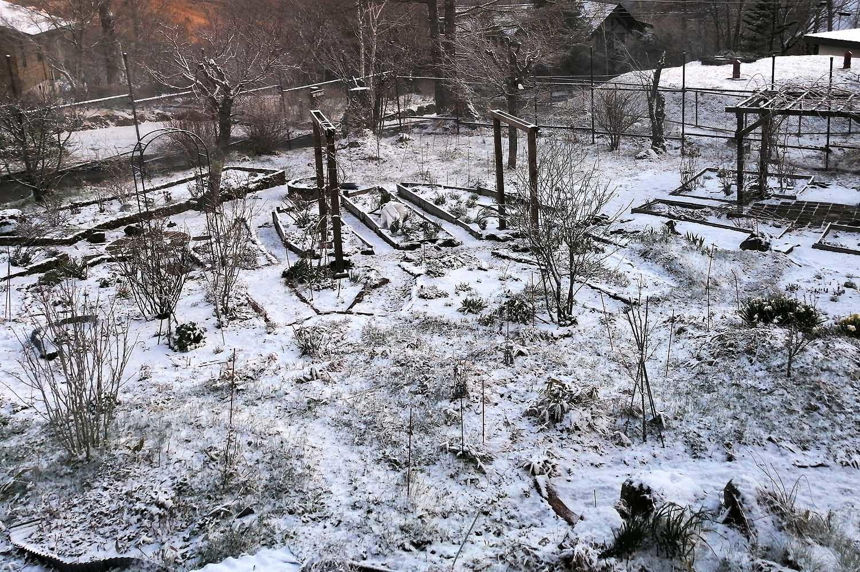 雪・・・_f0153164_18354374.jpg