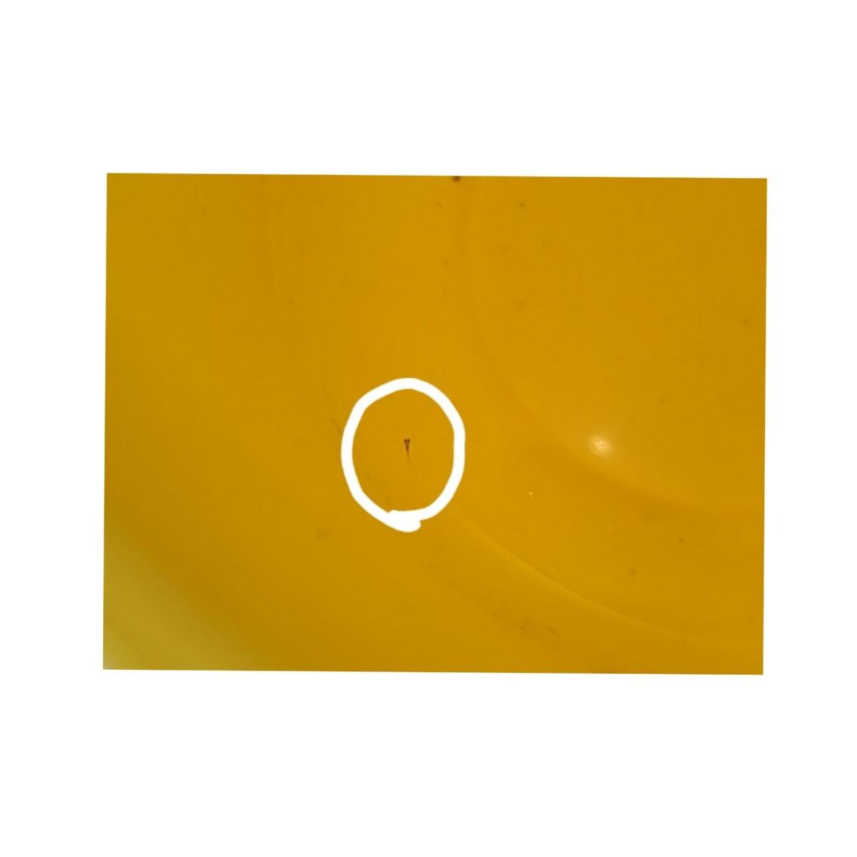 黄色のバケツの中身_b0211088_23134629.jpg