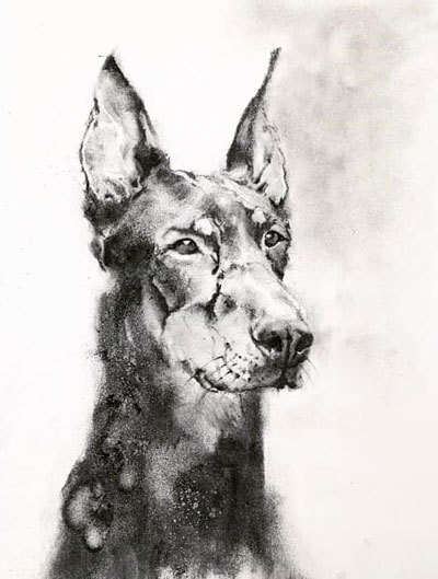 木炭犬2_e0195115_09100561.jpg