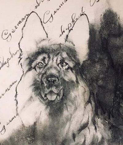 木炭犬2_e0195115_09104094.jpg