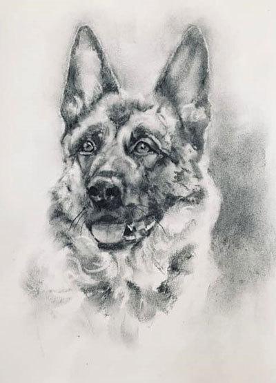 木炭犬2_e0195115_09341189.jpg