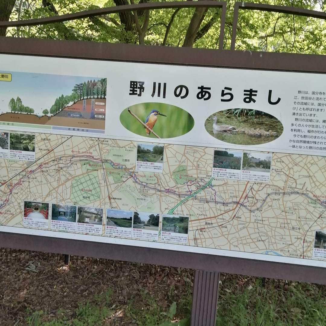 野川サイクリングロードを遡上、目指せ森林公園_d0057733_18154799.jpg