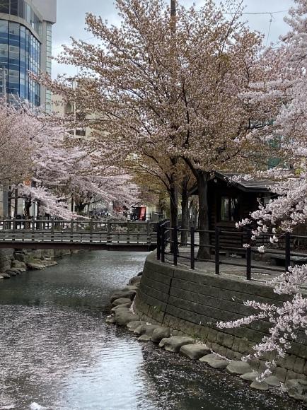 2021年5月2日(土)「SHOW WESUGI HEAVY TOUR 2021 Dignity」 in 札幌_d0335541_06575839.jpeg