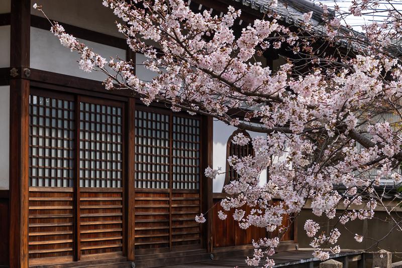 2021桜咲く京都 上品蓮台寺の桜たち_f0155048_19220016.jpg