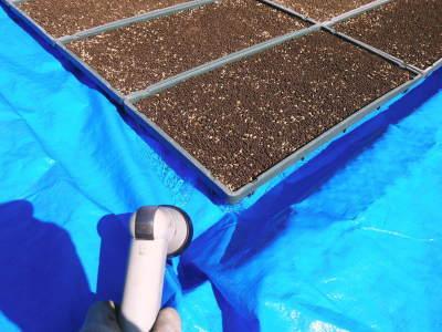 米作りの挑戦(2021年) 苗床をしました!今年も自給自足のために米作り頑張ります!_a0254656_17330215.jpg