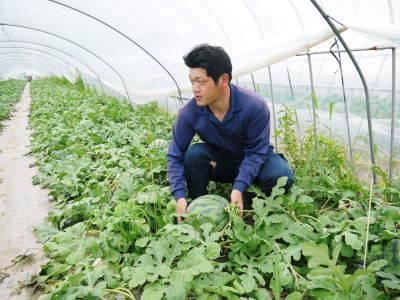 米作りの挑戦(2021年) 苗床をしました!今年も自給自足のために米作り頑張ります!_a0254656_18213808.jpg