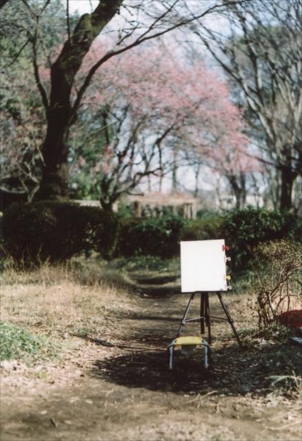 コロナ渦の公園、冬 1_c0082066_15474247.jpg