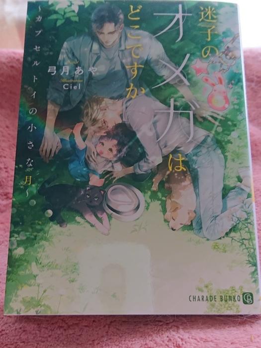 4月の新刊_c0089888_10335784.jpg