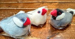 nachiさん 羊毛フェルト作品 関西つうしん店頭販売、通販 5月31日まで_d0322493_18242725.jpg