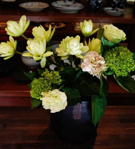 お花いっぱい♪ 美味しいもんいっぱい♪_e0167795_17312238.jpg
