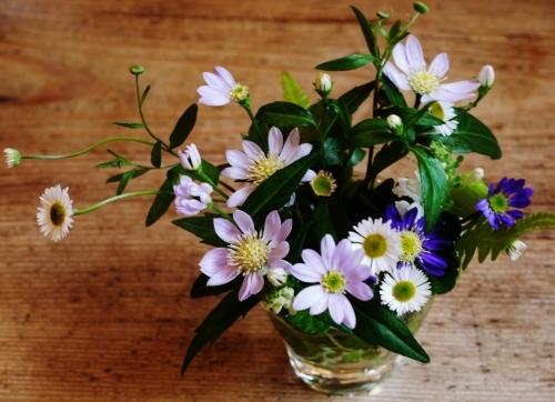 お花いっぱい♪ 美味しいもんいっぱい♪_e0167795_17323206.jpg