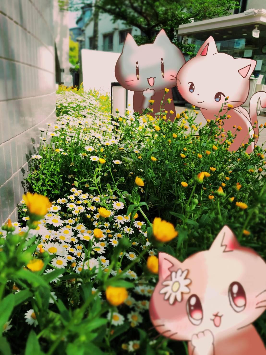 Twitter写真絵日記まとめ⑨_a0201203_15101847.jpg