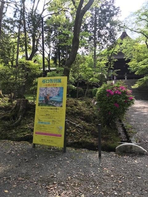 西陣コネクト・三井寺で開催中の谷口智則展へ。_f0181251_19414268.jpg