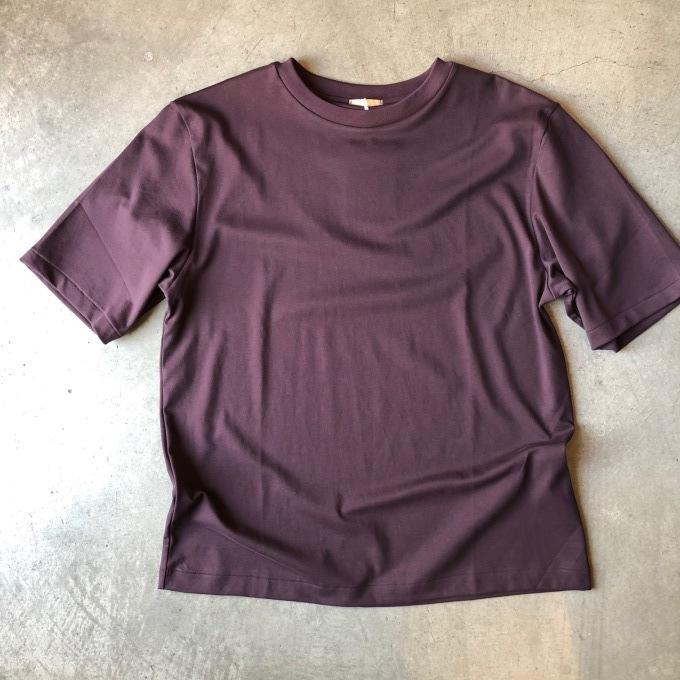 Lamond ラモンド スビンコットン Tシャツ_d0334060_14382356.jpeg