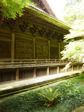 鎌倉の妙本寺に行きました。_c0195909_11191322.jpg