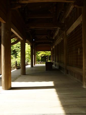 鎌倉の妙本寺に行きました。_c0195909_11192003.jpg