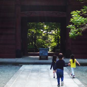鎌倉の妙本寺に行きました。_c0195909_11192530.jpg