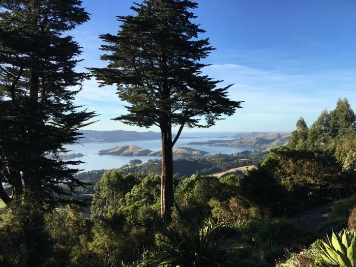 南島の旅 '21, 5月/ Traveling The South Island_e0310424_19210322.jpeg