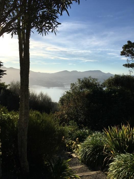 南島の旅 '21, 5月/ Traveling The South Island_e0310424_19263590.jpeg