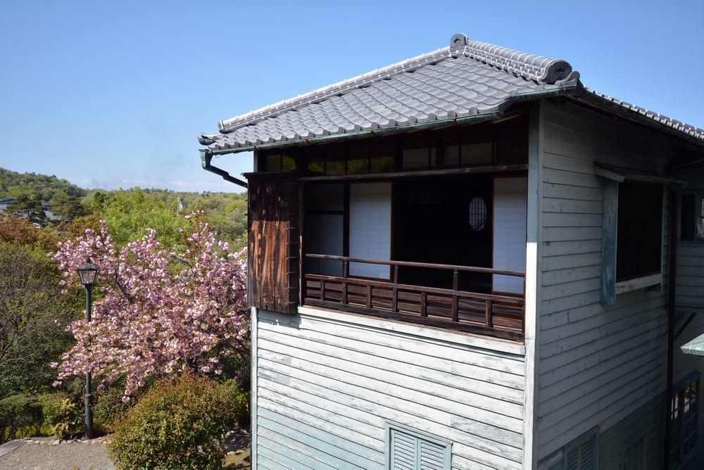 3丁目の八重桜_e0373930_20343219.jpg