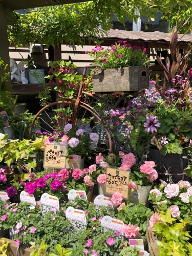 横浜イングリッシュガーデン 5_b0048834_07342860.jpg